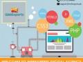 web-sevice-provider-company-web-design-and-development-pakistan-small-0