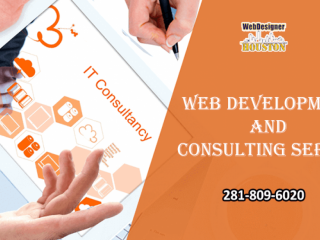 Web development and consulting service houston
