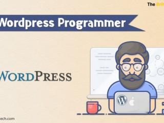 Hire Expert Wordpress Developer - Wordpress Programmer