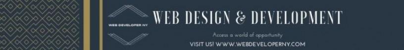 web-design-company-in-new-york-web-developer-ny-big-0