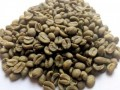 organic-coffee-beans-small-1