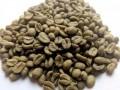 organic-coffee-beans-small-1