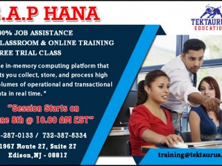 S.A.P HANA Training in Edison, NJ