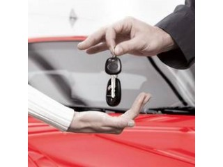 Access to an Auto Dealer Auction - US Dealer Licensing Camdenton