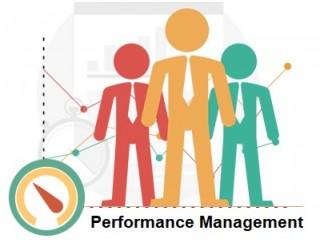Performance Management Lexington