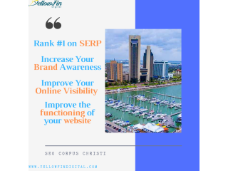 Affordable SEO in Corpus Christi, TX