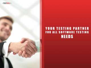 Test Automation Services-Test Automation Company-Testrig Technologies
