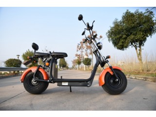 Citycoco Electric Scooter Bicycle Lithium Battery