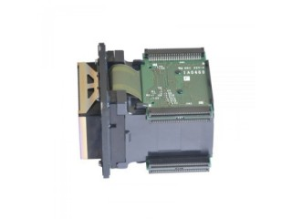 Roland BN-20 / XR-640 / XF-640 Printhead (DX7) (ARIZAPRINT)