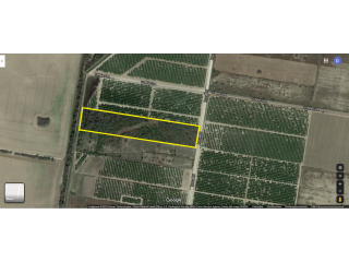 11.3 Acres for sale in Mission Texas!!!