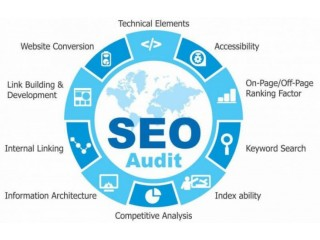 SEO Company Houston - Plans to Dominate your Market