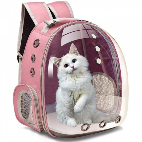 pet-transparent-back-bag-carrier-big-0