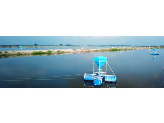 Solar Automatic Fish Feeder Machines