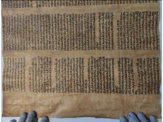 Torah for Free