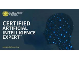 Artifical Intelligence Training