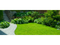hire-licensed-landscaping-services-in-west-palm-beach-small-2