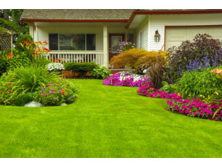 Hire Licensed Landscaping Services in West Palm Beach