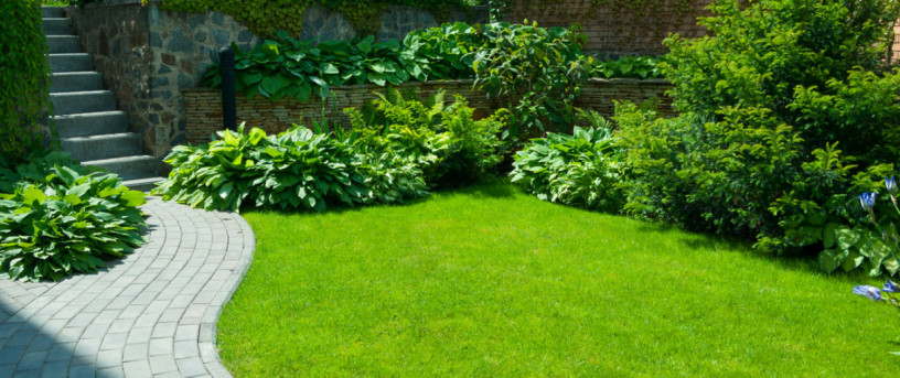 hire-licensed-landscaping-services-in-west-palm-beach-big-2
