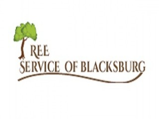 Tree Service of Blacksburg | Tree Removal Service Blacksburg