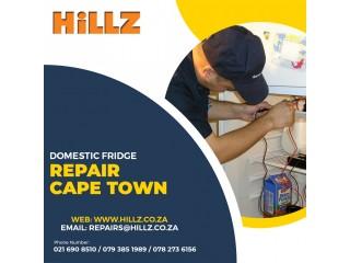 Domestic Fridge Repair – Why You Need it?